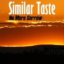 No More Sorrow - Single/Similar Taste
