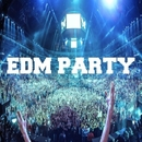Edm Party/Various artists & Philippe Vesic & Dino Sor & The Rubber Boys & Iconal