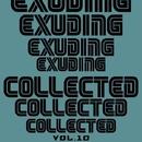 Exuding Collected, Vol. 10/Azik Le Viera & DJ Di Mikelis & Stereo Sport & Dmitry Ivashkin & Anna Tarraste & Phil Fairhead & Andre Hecht & Artem D-Enko & Spanless & Denis Grapes & Ra-Ga & Veegos & Top