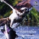 Strange Feelings/Michel Marchetti