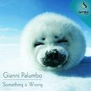 Something Is Wrong/Gianni Palumbo