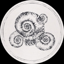 Perisphinctes Tiziani Remixes/Roberto