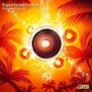 Paradise Sound/Experimental Feelings