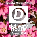 Essential House Tracks (Autumn 2016)/DJ Favorite & DJ Kharitonov & SyntheticSax & Nikki Renee & Theory & DJ Flight & Will Fast & Recovery Mafia & DJ Zhukovsky & DJ Dnk & Laura Grig & Mr. Spider & Pasha Snegir'