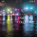 Essential Collected, Vol. 5/D.Matveev & Dave Romans & X-Killer & Invisible Brothers & Disbase System & Dibase System & F.I.69 & Ganju & FI69 & Sunn & Stas Bondarevskiy & KirKey