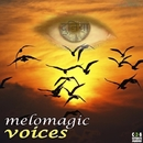 Voices - Single/MeloMagic