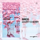Birds - Single/Marty Cherry