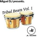 Tribal Beats Vol. 1/Miguel DJ