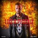 Like A Phoenix - Single/Better Matthew
