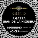 Beginning - Single/F.Gazza & Juan de la Higuera