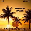Essential Dance Vol. 01/RAV & Enli5 & Endrudark & Diogene & Psycon