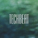 TechBeat/DJ Di Mikelis & Stereo Sport & Dmitry Ivashkin & Cristian Agrillo & J. Night & Alex Sender & Phil Fairhead & Andre Hecht & Deep Control & Matt Mirenda & Ra-Ga & Deepend & Piece Of Peace