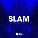 Minor Interruption/Slam
