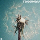 Tenderness, Vol. 2/David Tamamyan & Antonio Picikato & Phillipo Blake & Jean Luvia & Find the Identity & Pifagor & K.S. Project & Eddwingstone & AlikYas & Akira