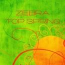 Zebra Top Spring/ArtJumper & Bioritm & TheMiffy & Jenia Noble & radrigessss & ArcticA & Reverse Eternity & Jason Slim & Black Agate & Willy3k & Rina Light