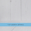 TOP Zebra Spring/Doors in the Sand & DJ Vantigo & Valefim Planet & Jayson House & Sled & TheMiffy & NiRo & DJ Moj@r & Sklayz & Sasha Kalibr