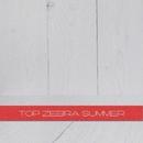 TOP Zebra Summer/LuOrchestra & Jack-o'-Lantern & Alex Skywalker & Dan Smooth & Elena T & Mimikria & Fenix Project & Jason Slim & evGEN fm & Cosmo Sound Meditation Trance Club & TAYSER & HoSt