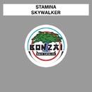 Skywalker/Stamina
