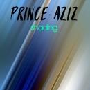 Shading/Prince Aziz