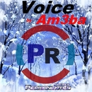 Voice - Single/Am3ba