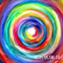 Neon Musik 14/Boy Funktastic & J. OSCIUA & Pepote & Phil Fairhead & Mario Cevoli & Danny Romano & Claudio Grosso & Eddy Jay & Circle Beat & Ian Hubert