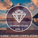 Sunset House Compilation Vol. I/Beat Ballistick & Grotesque & Andrey Keyton & Sharapov & A.Golubitskiy & Artur Montecci & Dj Sergey Ivanoff & F1lo & Onegin & HaNNter & L'VIN & Maxun & MBNN & NEDNOIZ & Wayik