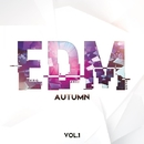 EDM MUSIC: Autumn, Vol. 1/Arson & Uachik & Alex Nail & Kernel Dutch & Pasha Line & Warpsize & Dmitry Bereza & Baldey & DJ Suvorovskiy & Dublusters