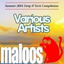 VA - Summer 2014 Deep & Tech/Hot Topic & Port-H & Lairdriver & Dj Spy & Slashisticks