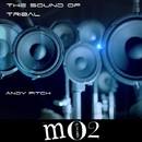 The Sound Of Tribal/Andy Pitch & B.A.