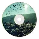 Bird Of Seed EP/Tim Deetakt