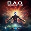 The Spirit Molecule/B.A.O. & Cip