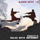 ELASTIC BOYZ 12/LSWR & Sub Panic & Capo & Funkylover & DJ Memory & Fonzie Ciaco & Chris Dead & Dan Lux & Shame & BSMNT & Siamesi & Dj Skizo & Kline