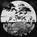 Cosmic Tape Vol 1/Cosmic Garden
