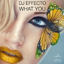 What You - Single/Dj Effecto