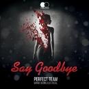 Say Goodbye - Single/Perfect Team