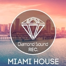 Miami House/AIRBUZZ & Hanny & Alex M.I.F. & Orangestripe & DJ Peyya & Pneumaticc & Peyya & BRAINNEBULA & DJ MOONBOY & ElectRoman & Ray Borton & Last Ketchup