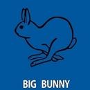 Full Tech/Rousing House & Big Bunny & 21 ROOM