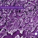 Ever So Merry LP/Paul Birken & Keepsakes & 1.125.x1 & Interferon