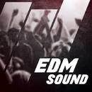 EDM SOUND/GYSNOIZE & Uachik & X-Day & Zyaba & M$K & SheffeRSounD & Warpsize & Overloop & DJ Suvorovskiy & Dynamic Pepper