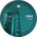 Cava EP/Temudo & ViL & Eric Fetcher