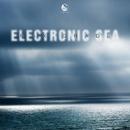 Electronic Sea/Max Grade