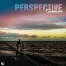 Perspective/Submersion