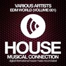 EDM World (Volume 001)/DJ Favorite & DJ Kharitonov & Drop Killers & Brilliant Brothers & DJ Kristina Mailana & Street Blaster & Freshdance Project & Lykov & P.H.A.N.T.O.M & Hack Jack & Anbagro & Murrell & Steve Montana