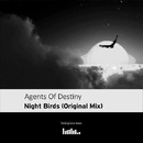 Night Birds - Single/Agents Of Destiny