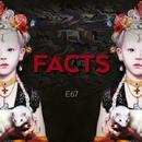 Facts/E67