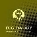 Big Daddy Tunes, Vol.045/Simply & Manchus & Quantum Duxe & NIR 300 & Grim Silence & Postmen Death & Teddy Beat & Stop Narcotic & Grotesque & Rish & HDN Sound