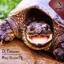 Phey Boom/Dj Entwan & Relow