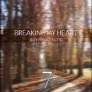 Breaking My Heart/Boy Funktastic