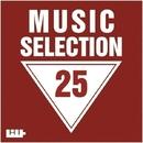 Music Selection, Vol. 25/Schastye & Royal Music Paris & Switch Cook & The Rubber Boys & Sandro P & DJ Snep & Spellrise & Dj Stragzi