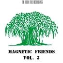 Magnetic Friends, Vol. 3/DJ Pavel Slim & Bukat & Dmitry Bereza & Niki Verono & Ann Jox & DJ Oparin & Dim Mass & Vitaly Panin & DJ SESTO & Trokopotaka & Dero